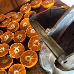 tangerines Juicer