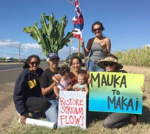 Keanae Water Rights Moms